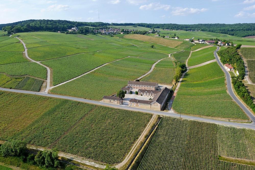 Historic hillside vineyards of Hautvillers. – © Michel Jolyot