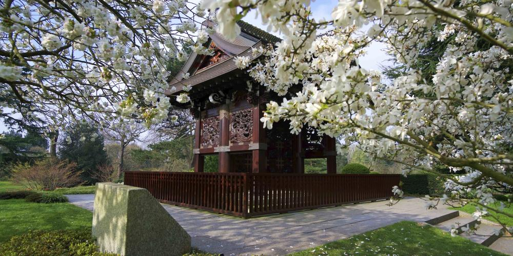 The Japanese Gateway - a highly manicured landscape comprised of three garden areas and created to complement the Chokushi-Mon (Japanese Gateway). – © RBG Kew