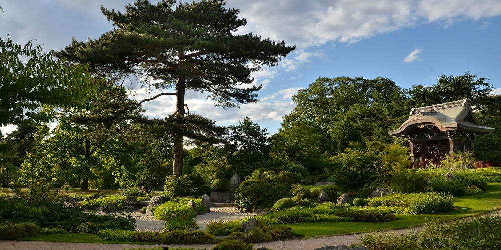 The Japanese garden - a highly manicured landscape comprised of three garden areas and created to complement the Chokushi-Mon (Japanese Gateway). – © Cristian Gusa / Shutterstock
