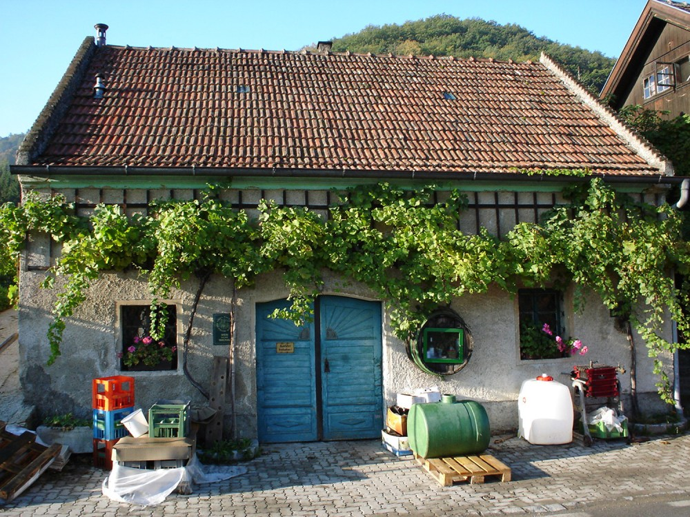 The wines are produced and stored in cellars, which might also be located apart from the farmstead. – © Michael Nader