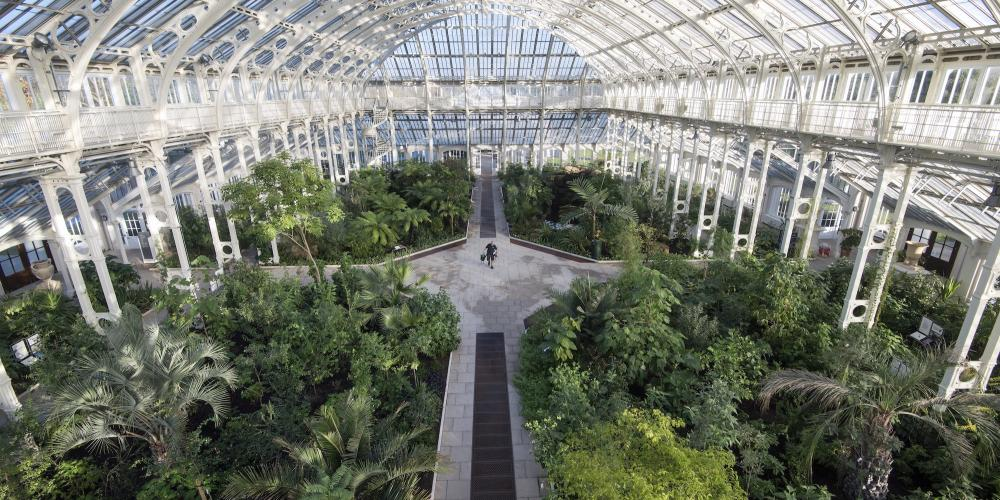 The Temperate House features 1,500 species from five continents and 16 islands. – © RBG Kew