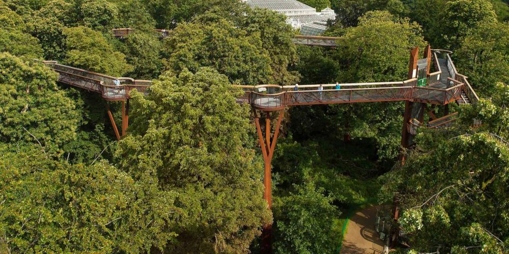 Climb to this one-of-a-kind Treetop Walkway, 18m high and 200m long—for a bird's eye view of Kew. – © Andrew McRobb