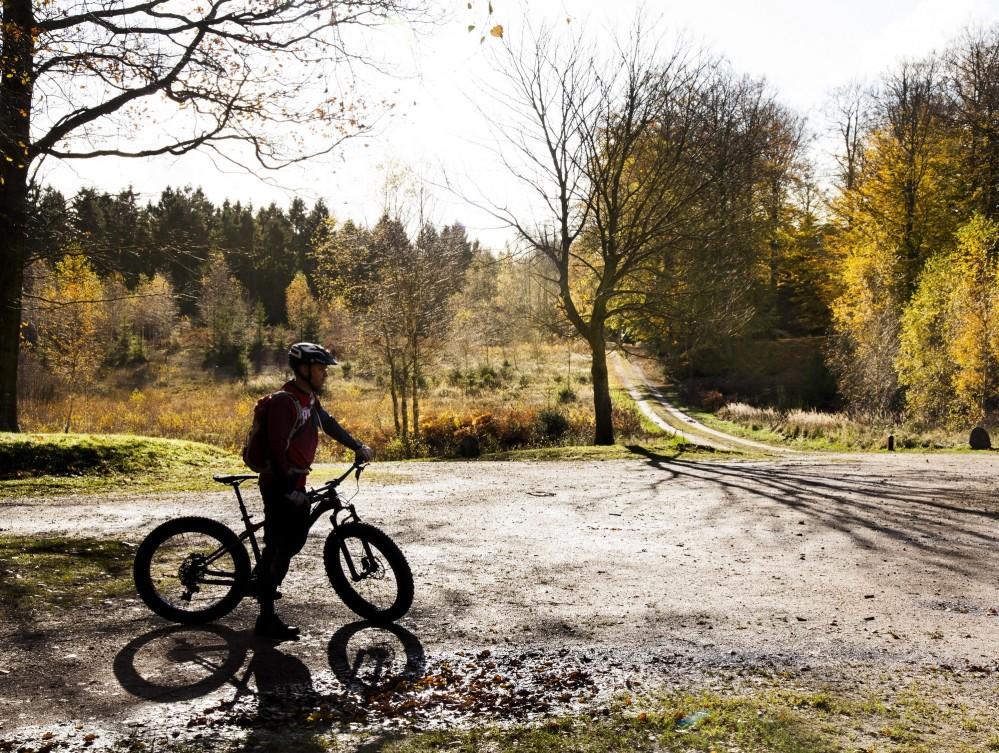The gravel roads of the King's Star in the Great Deer Park are ideal for cycling. – © Sune Magyar / Parforcejagtlandskabet i Nordsjælland