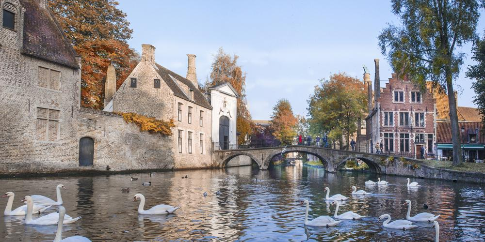 Bruges' white swans and the Beguinage serve as a perfect spot for the most romantic photoshoots. – © Jan D'Hondt / VisitBruges