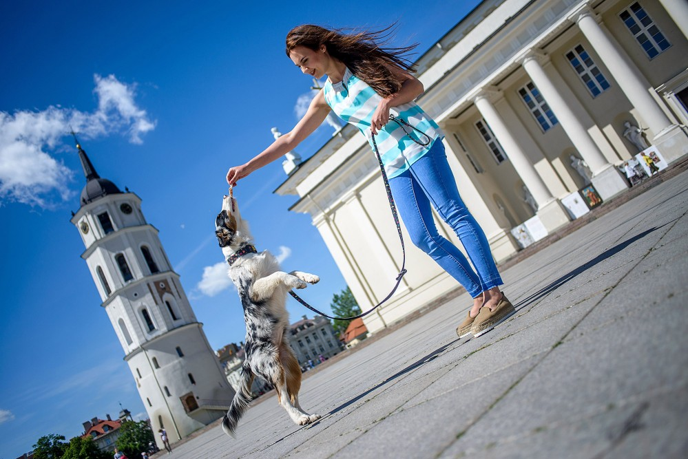 """Vilnius has been considered a """"tolerant city"""" for centuries, and continues that tradition today. – © Audrius Dzimidavicius / www.vilnius-tourism.lt"""