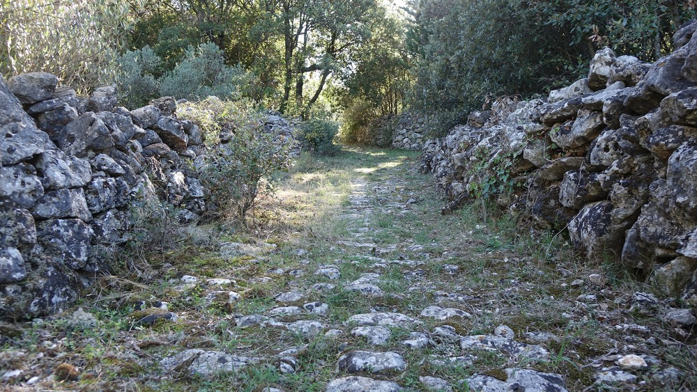 One of the best ways to explore the Stari Grad Plain is by walking or cycling along the old paths that cross between the farming land. – © Stari Grad Plain