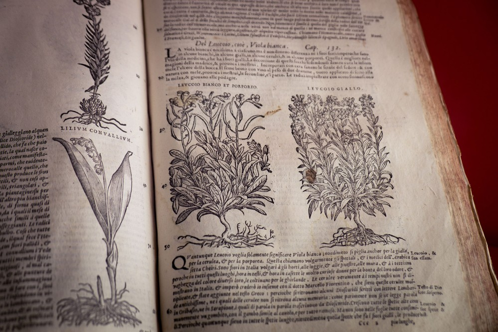 One of the antique recipes from an ancient book at Spezieria di Santa Fina. During our workshops we select remedies from these pages. – © Andrea Miserocchi / Italian Stories