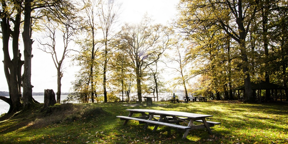 In the new national park, there are many places where you can camp or just enjoy a picnic in the astonishing landscape. – © Sune Magyar / Parforcejagtlandskabet i Nordsjælland