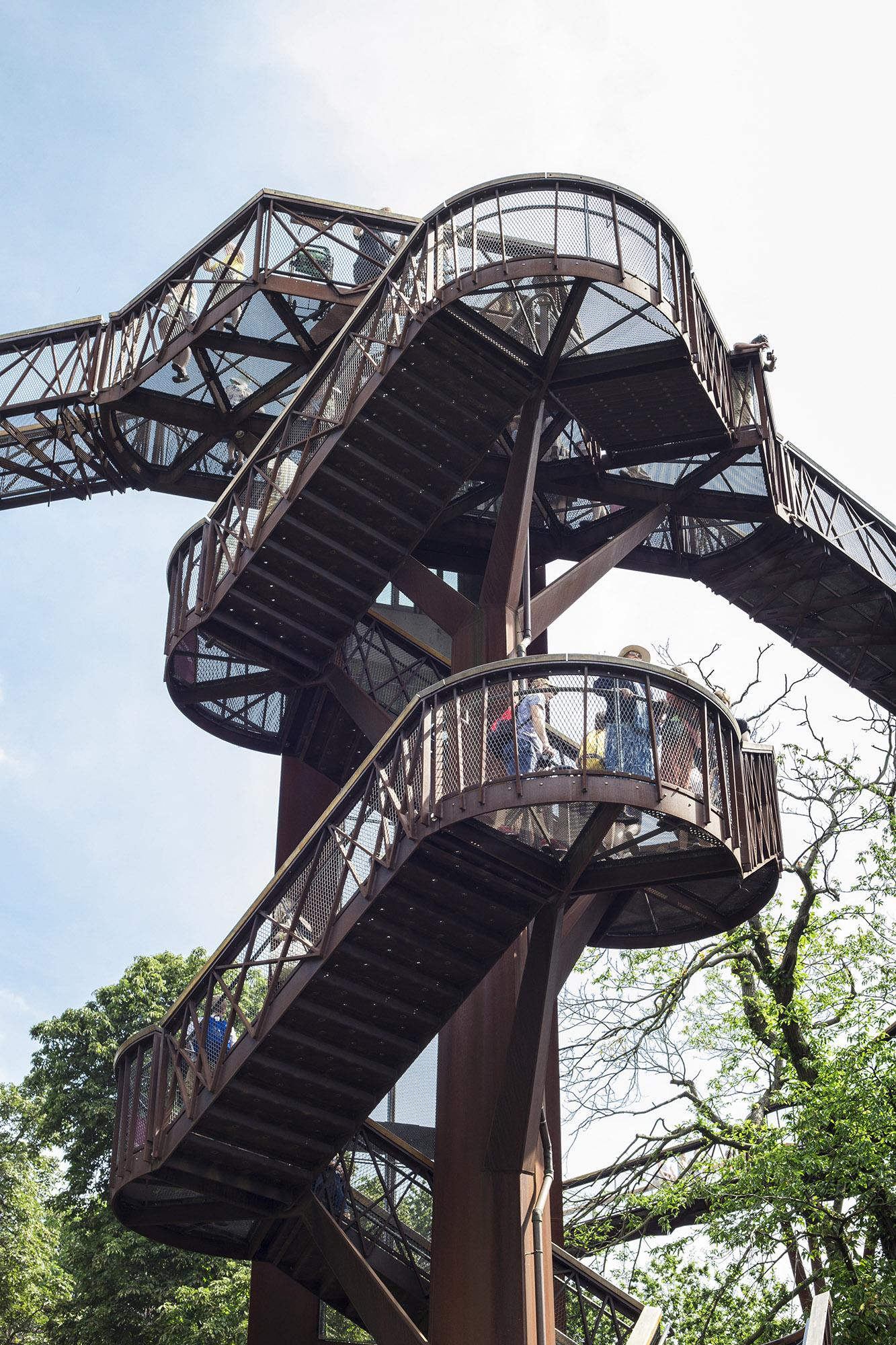 Structure of the treetop walkway bridge through the trees at Kew. – © Bruno Mameli / Shutterstock