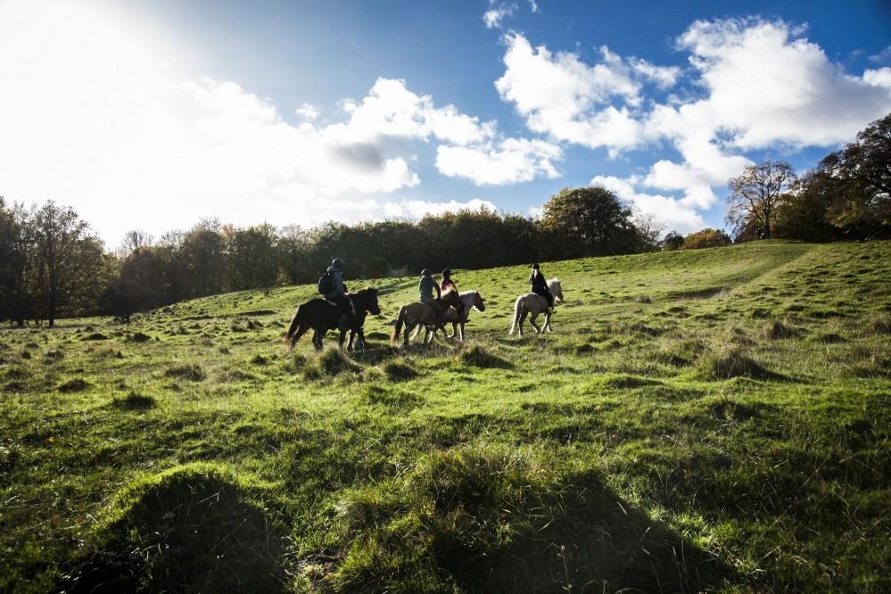 Visitors regularly enjoy the Par Force Hunting Landscape to walk, run, bike, or ride on horseback through the forests. – © Sune Magyar / Parforcejagtlandskabet i Nordsjælland