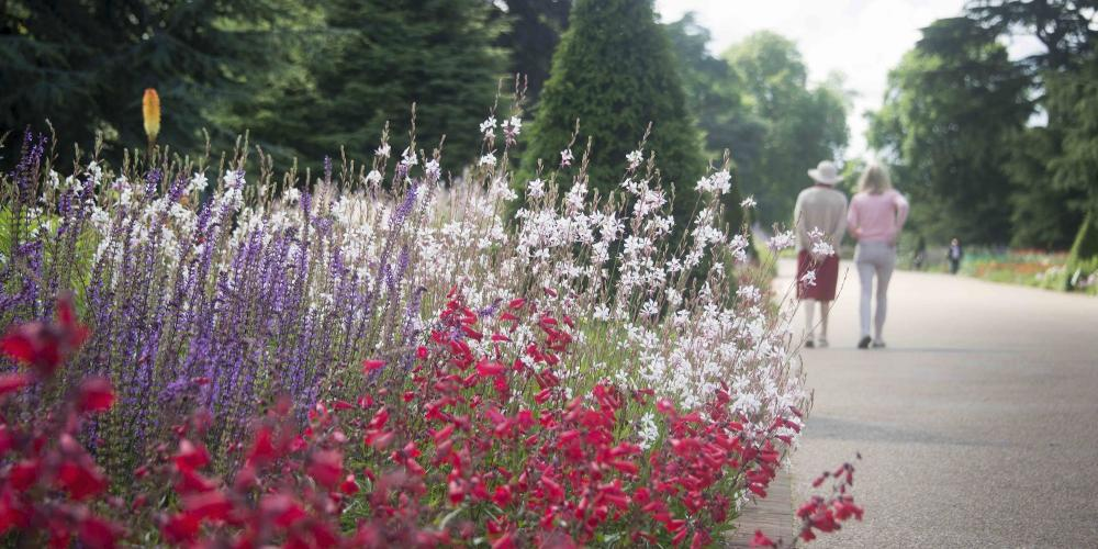 The longest double herbaceous border in the UK, the Great Broad Walk Borders feature 60,000 flowering plants. – © Jeff Eden