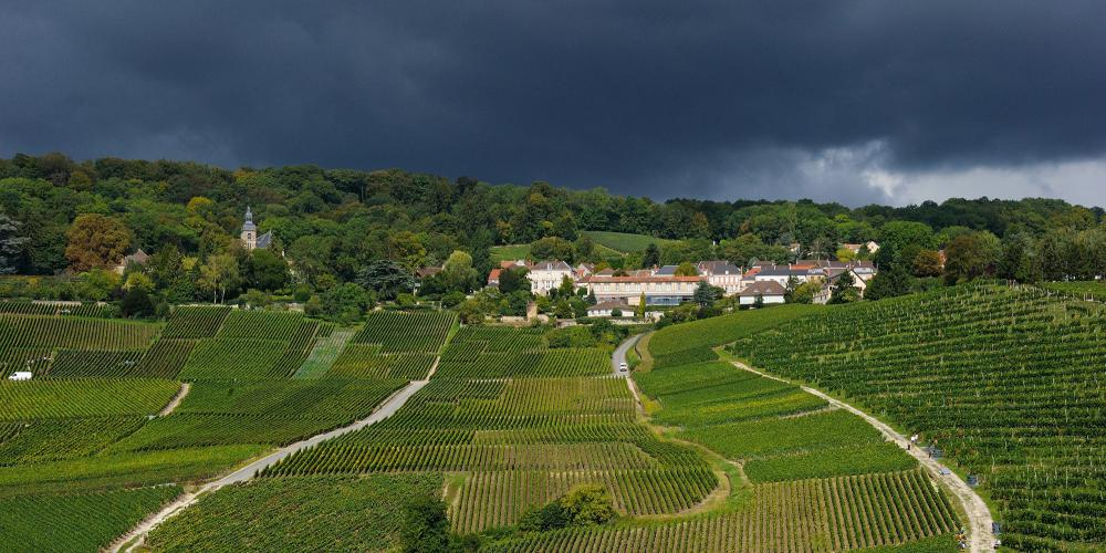 Amphitheatre vineyard of Hautvillers. – © Michel Jolyot
