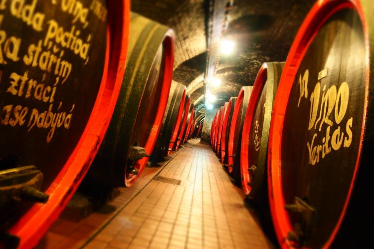Built in 1430, Valtice Castle cellar is one of the oldest and largest wine cellars in the Czech Republic, where you can tour and enjoy a wine tasting. – © Archive of Valtice Castle