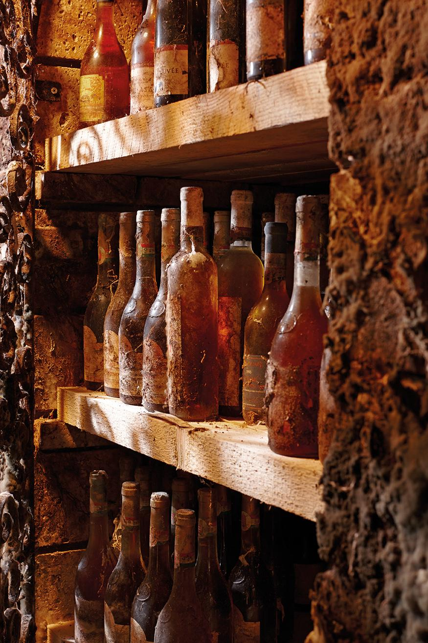 Like the antique collection of Gergely Vince, the wine, the cellars, the antique collections, and the people make a Tokaj-Hegyalja visit a special experience. – © Ferenc Dancsecs Furmint Photo