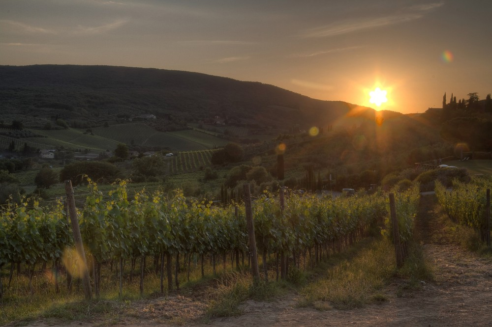 An experience for two surrounded by the Vernaccia vineyards of San Gimginano, the promise of fabulous sunsets, endless vistas on the unique skyline, local organic Vernaccia and exquisite hospitality. – © Andrea Caporaletti / Be Tuscan for a day