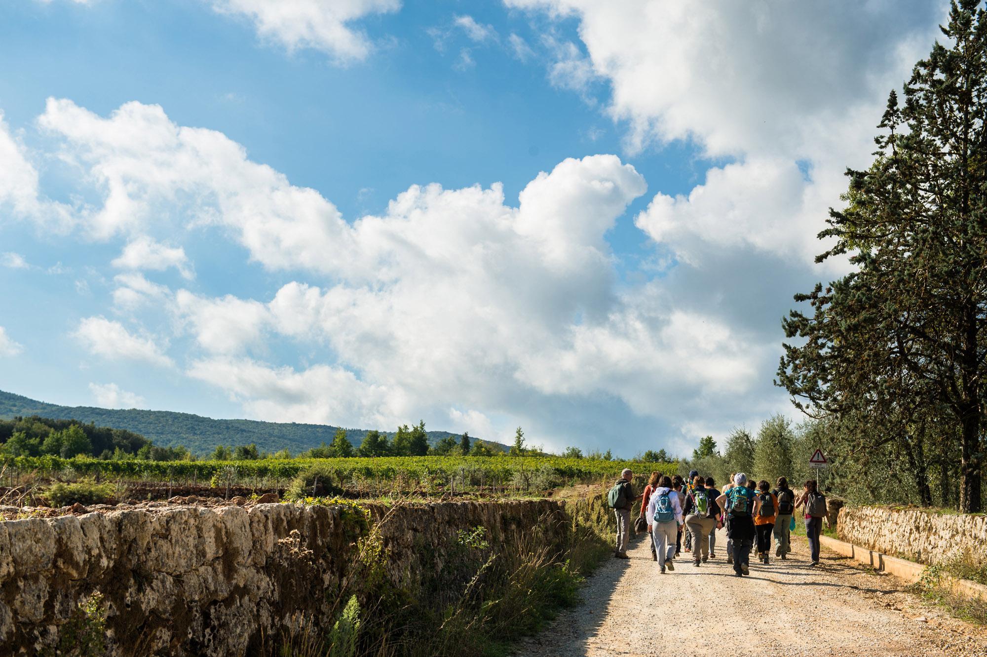 La Via Francigena - célèbre route de pèlerinage à Rome - de San Gimignano à Monteriggioni. - © Yari Ghidone / Slow travel Fest