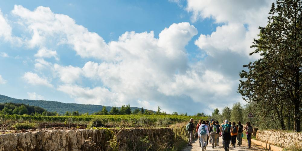 Walking part of the route of the Via Francigena from San Gimignano to Monteriggioni. – © Yari Ghidone / Slow travel Fest