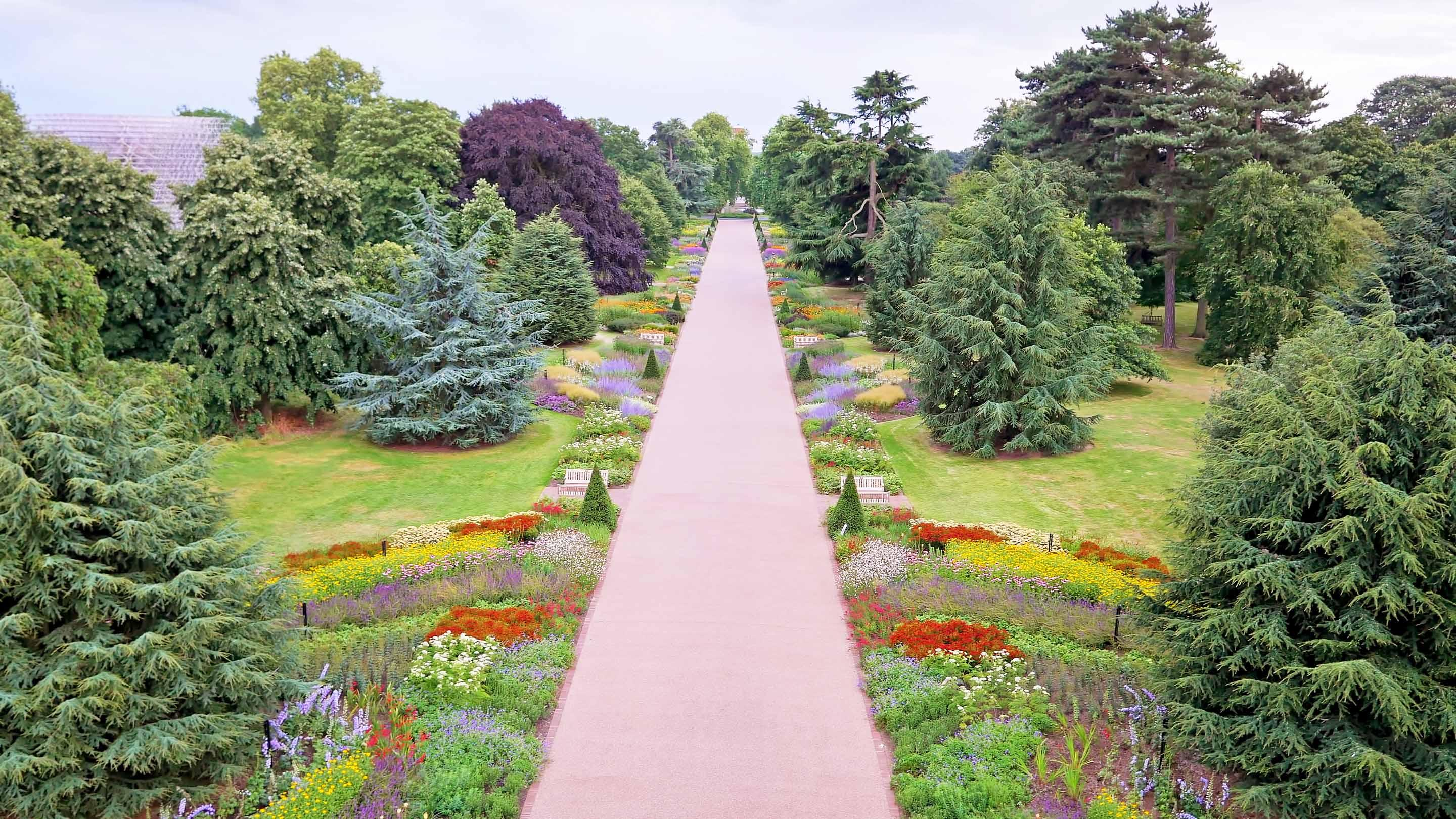 The Royal Botanic Gardens at Kew has more than 50,000 species of native and exotic plants, trees, and flowers on site.  – © RBG Kew