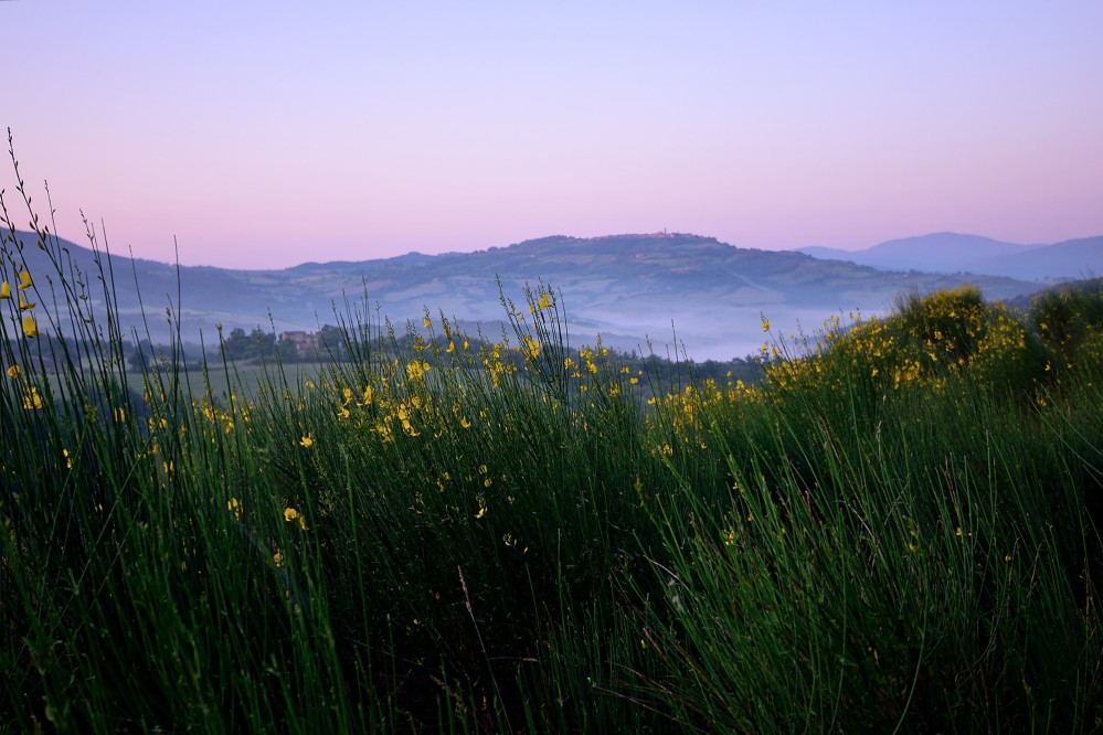 Radicondoli is the perfect place to enjoy gently rolling hills, woodlands and the unspoiled simplicity of the Tuscan countryside. – © Tiziano Pieroni / Be Tuscan for a day