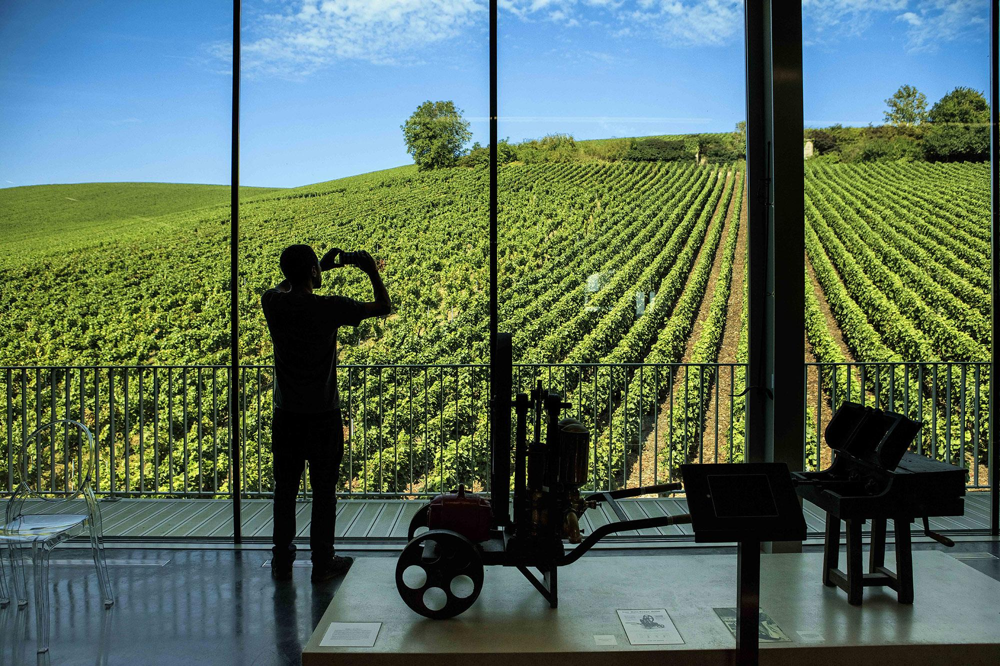 Magnificent view of the vineyard from the Champagne Crafts Museum of the Cité du Champagne Collet Cogevi, Aÿ. – © PE Rastoin collection / Collet Cogevi