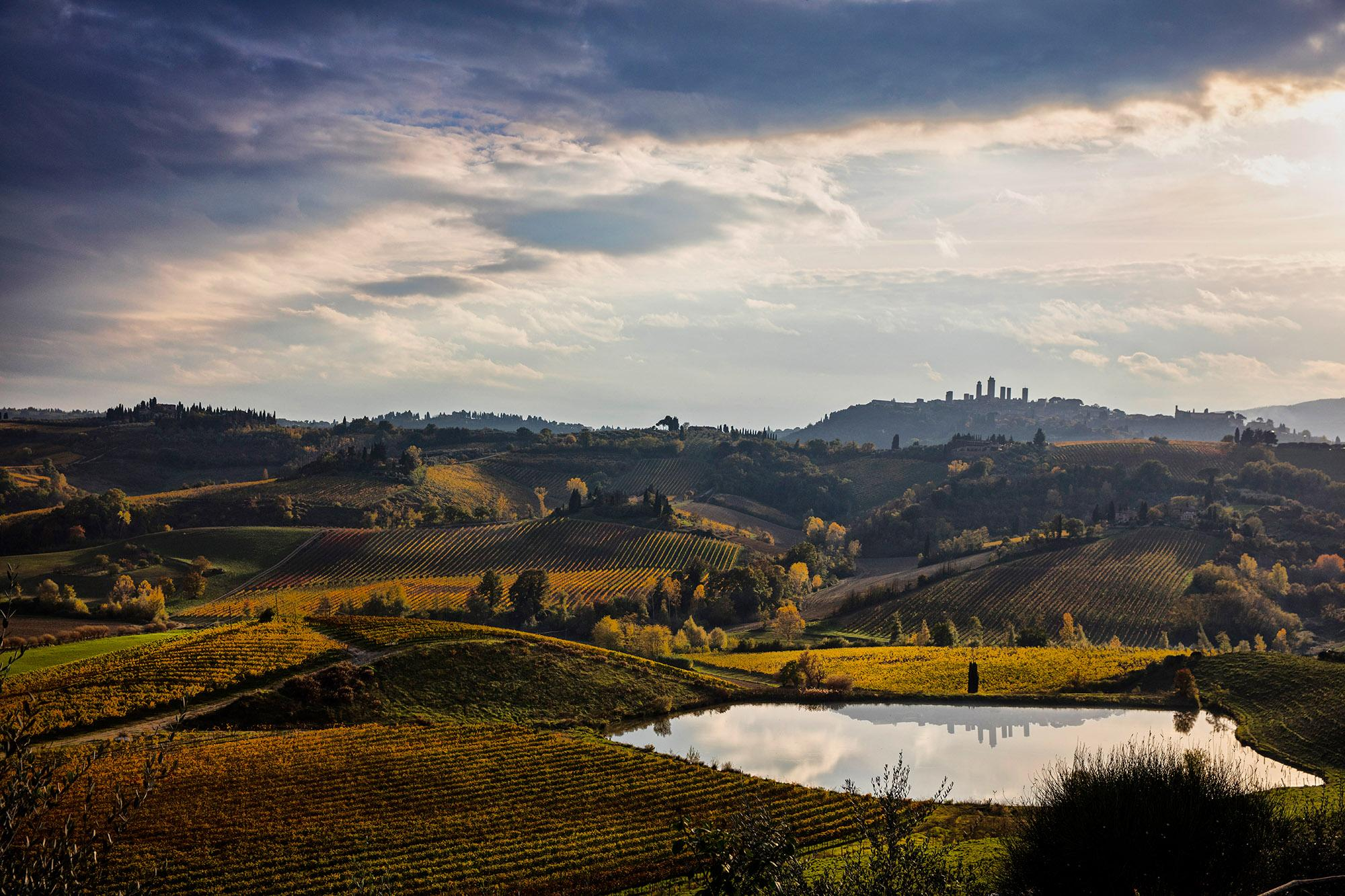 Vernaccia di San Gimignano wine has been grown in this region since the Middle Ages. - © Consorzio della Denominazione San Gimignano