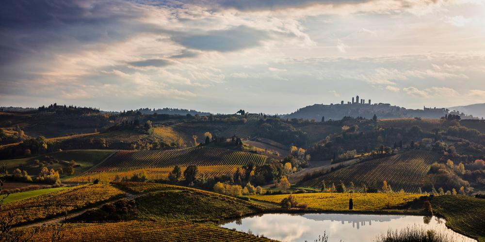 自中世纪以来,该地区一直出产圣吉米尼亚诺维纳恰白葡萄酒。 – © Consorzio della Denominazione San Gimignano