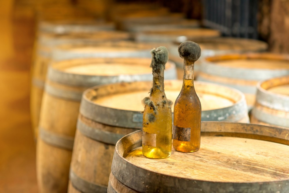 Over the centuries, different ethnic groups settled in the area—drawn partly by the unique environment that lent itself to wine production. Pictured here: old bottles of white wine with famous black mold. – © RossHelen / Shutterstock