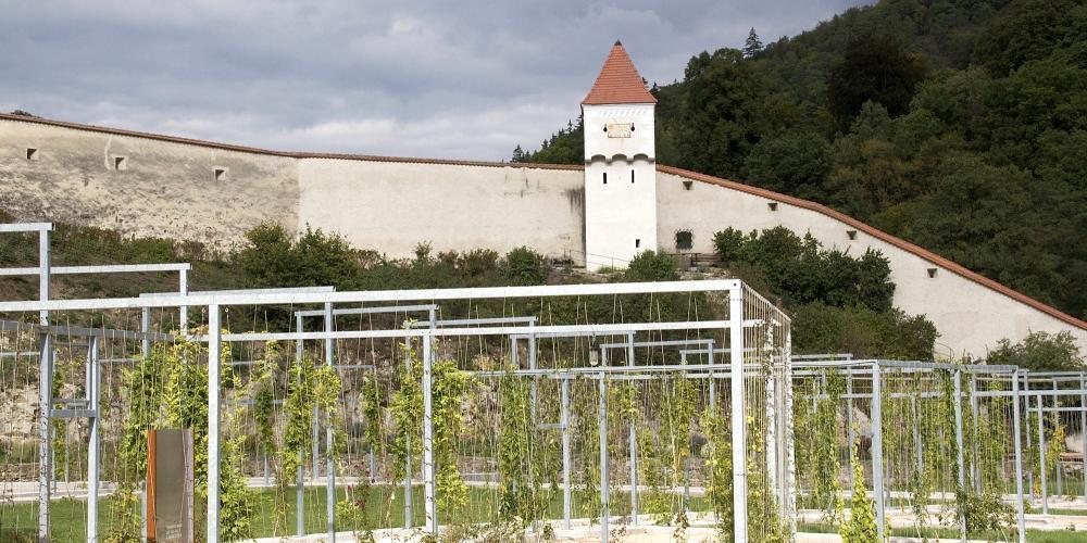 The Meditation Garden of the Carthusian Monastery makes historic structures visible through a contemporary garden design. – © Anna Lun