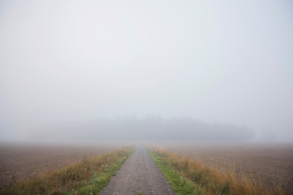 A road somewhere in the nature reserve of Lovö on a foggy day. – © Melker Dahlstrand
