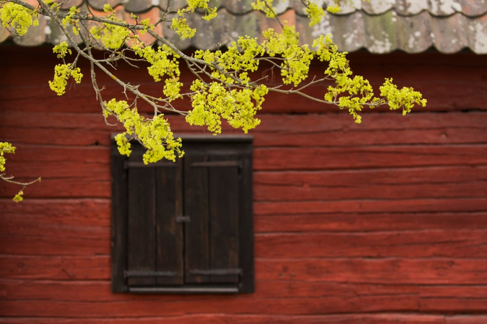 Very little has changed here during the centuries. Explore Sweden's nature, the local Falu red color on buildings, the green, the blue skies, and the clean air. – © Melker Dahlstrand