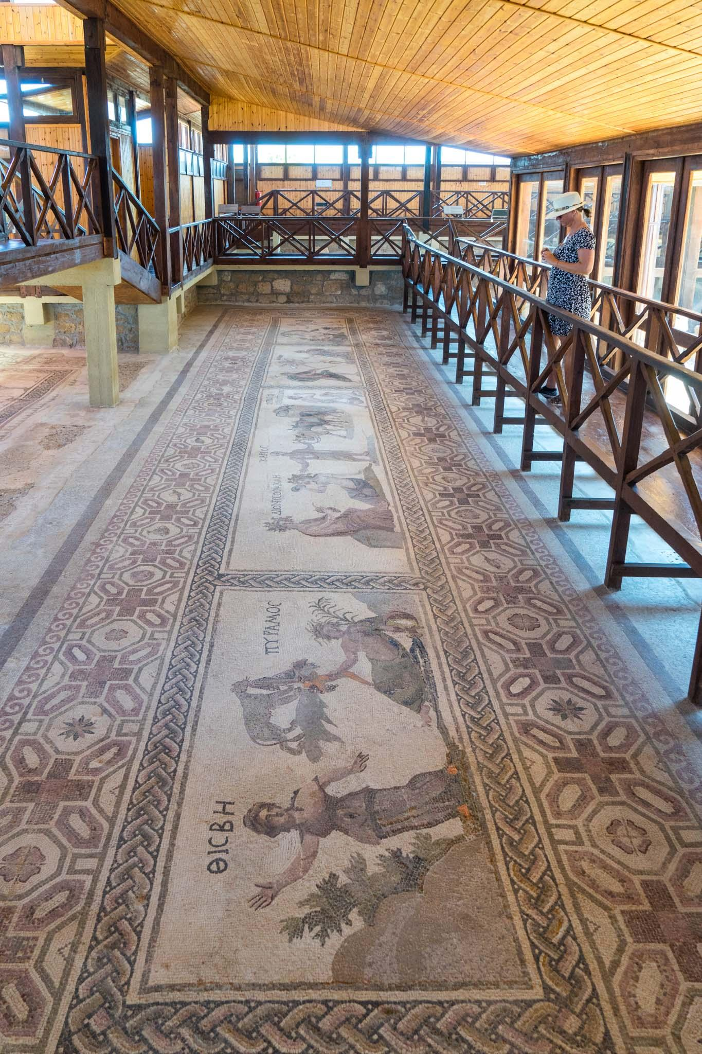 The House of Dionysos at Kato Pafos has one of the most spectacular collections of floor mosaics in the world. Elevated walkways above mosaics allow visitors to see them in all their glory. – © Michael Turtle