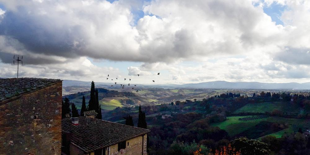 Autumn in San Gimignano, colour changes our birds stay. – © Tina Fasulo / Share your Sangi
