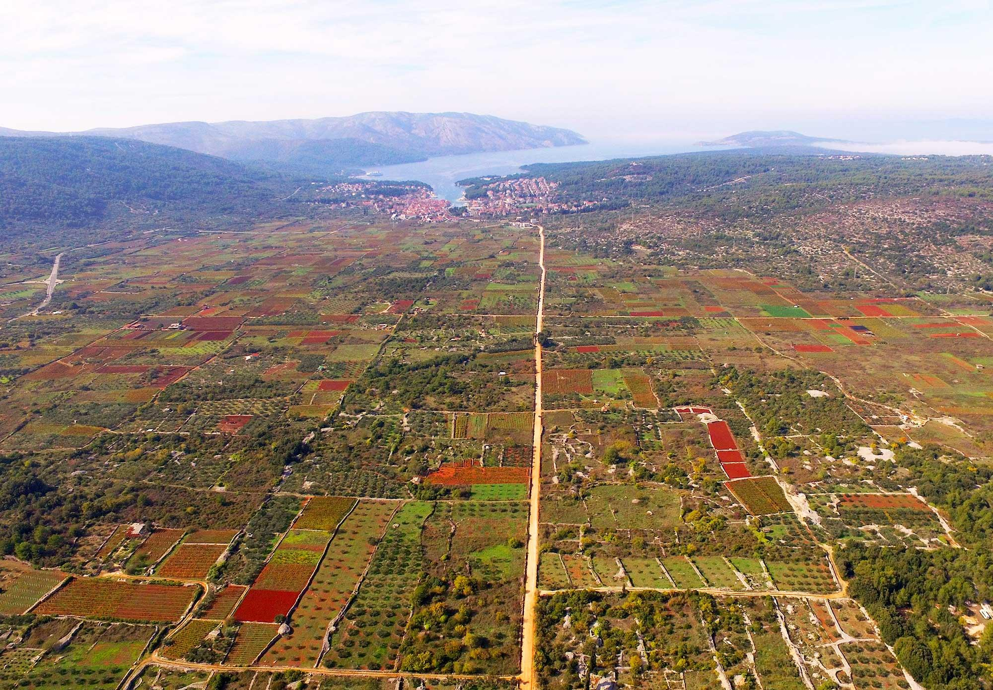 The land parcel system set up by the Greek colonisers has been respected over later periods, and the cultivation of grapes and olives here has been uninterrupted for 24 centuries up to the present day. – © Stari Grad Plain