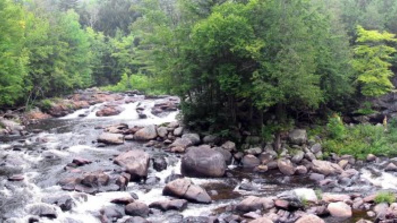Panoramic view of the Sawmill Site Waterfalls and the Natural Stone Bridge. – Greg Beckler