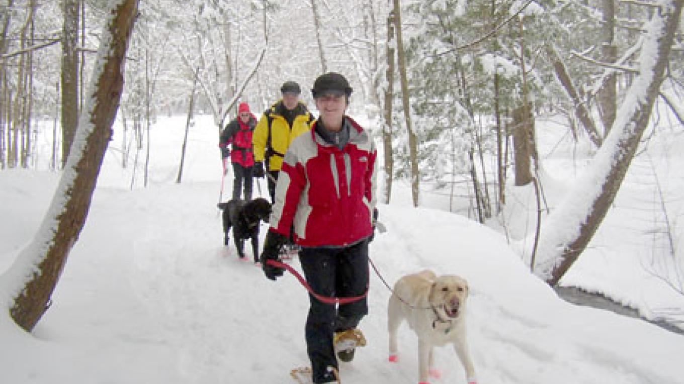 Snowshoeing with canine friends