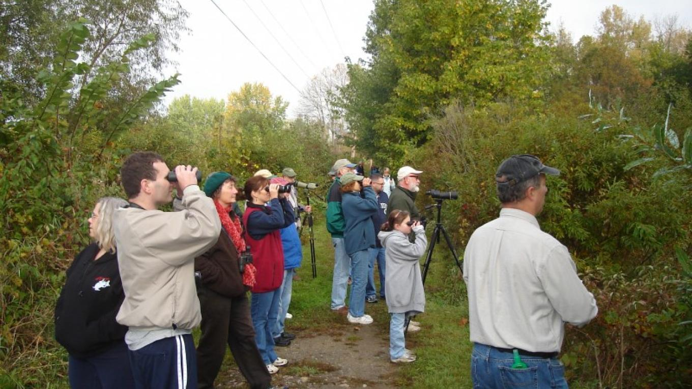 Bird watching on Audubon Society walk during community event at Preserve – Chris Pagniello