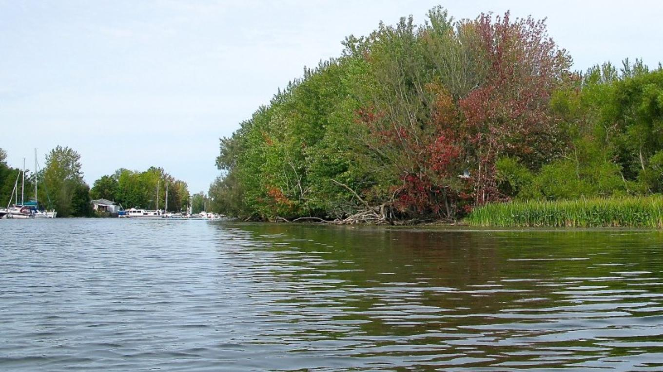 Mouth of the Great Chazy River. – Courtesy of Cathy Frank