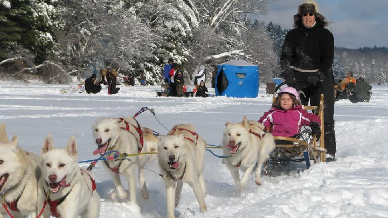 Dog Sled Rides at the 2011 Winter Fest