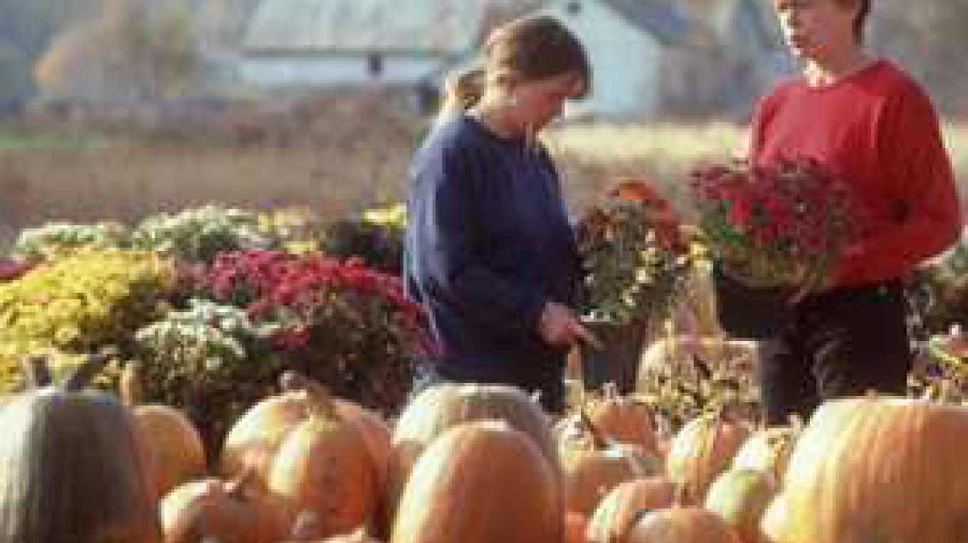 2 ladies holding flowers, pumpkins in foreground – Saratoga County Chamber of Commerce