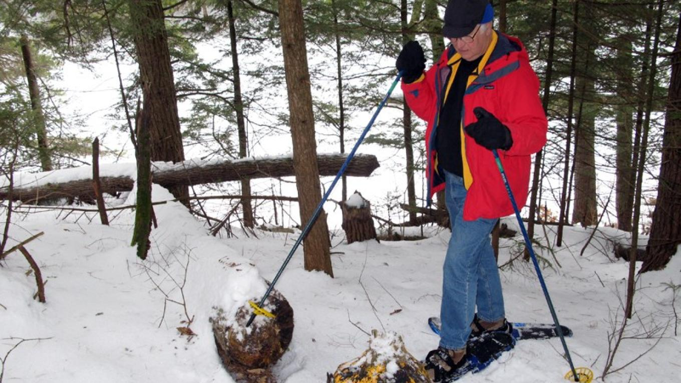 Winter.  Checking out stumps along the Beaver Stump Trail.  We currently have over 6 miles of trails with interesting features (sink holes, cliffs, trout brook and lookouts). – Greg Beckler