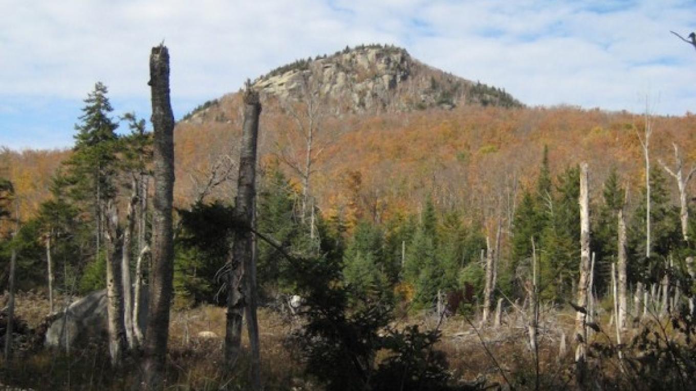 Peaked Mtn in Early Fall – David  Webb