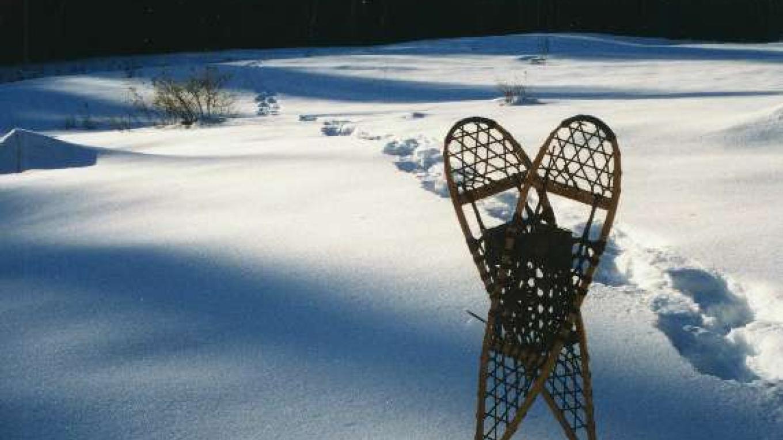 Snowshoeing – Matt Sprow