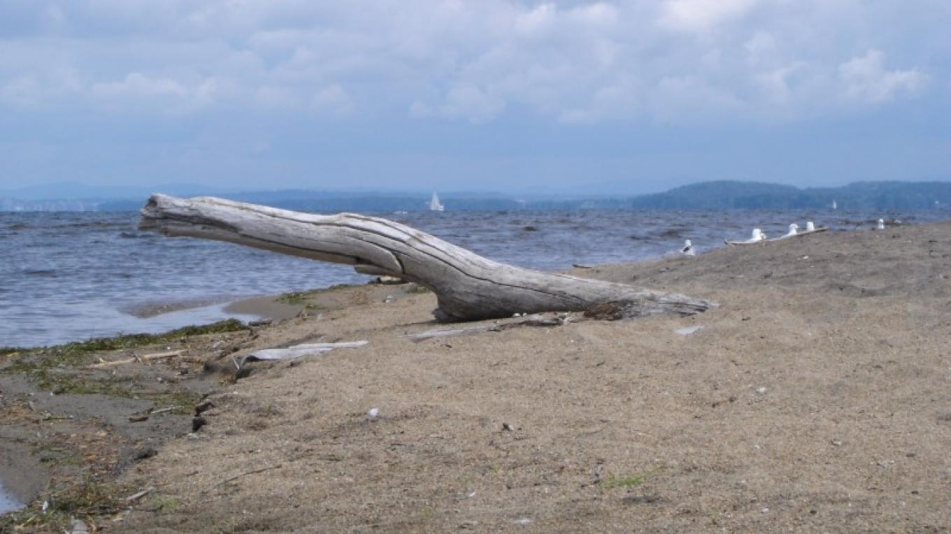 Sandy beaches along the delta. – Courtesy of Cathy Frank, in A Kayaker's Guide Lake Champlain