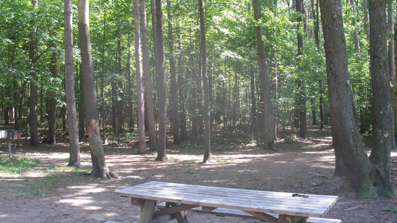 Picnic area and trail heads at Kinns Road Park – Jude Hazard