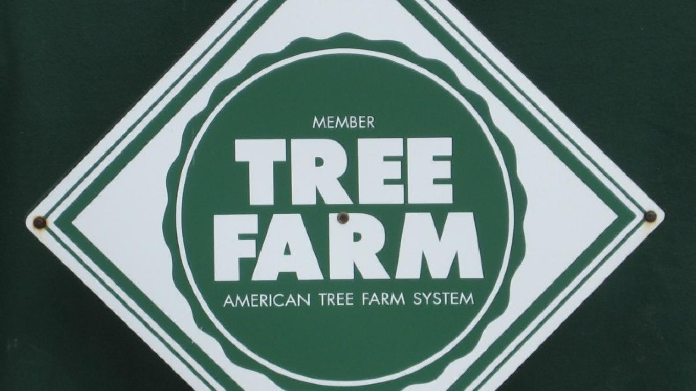 We are a Certified Tree Farm – Winefred Martin