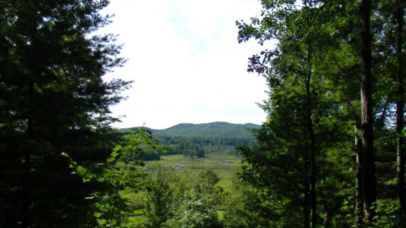 Adirondack Coast Visitors Bureau