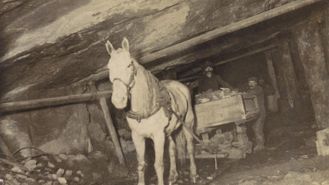Horse carrying out tailings from mine. – Moriah Historical Society