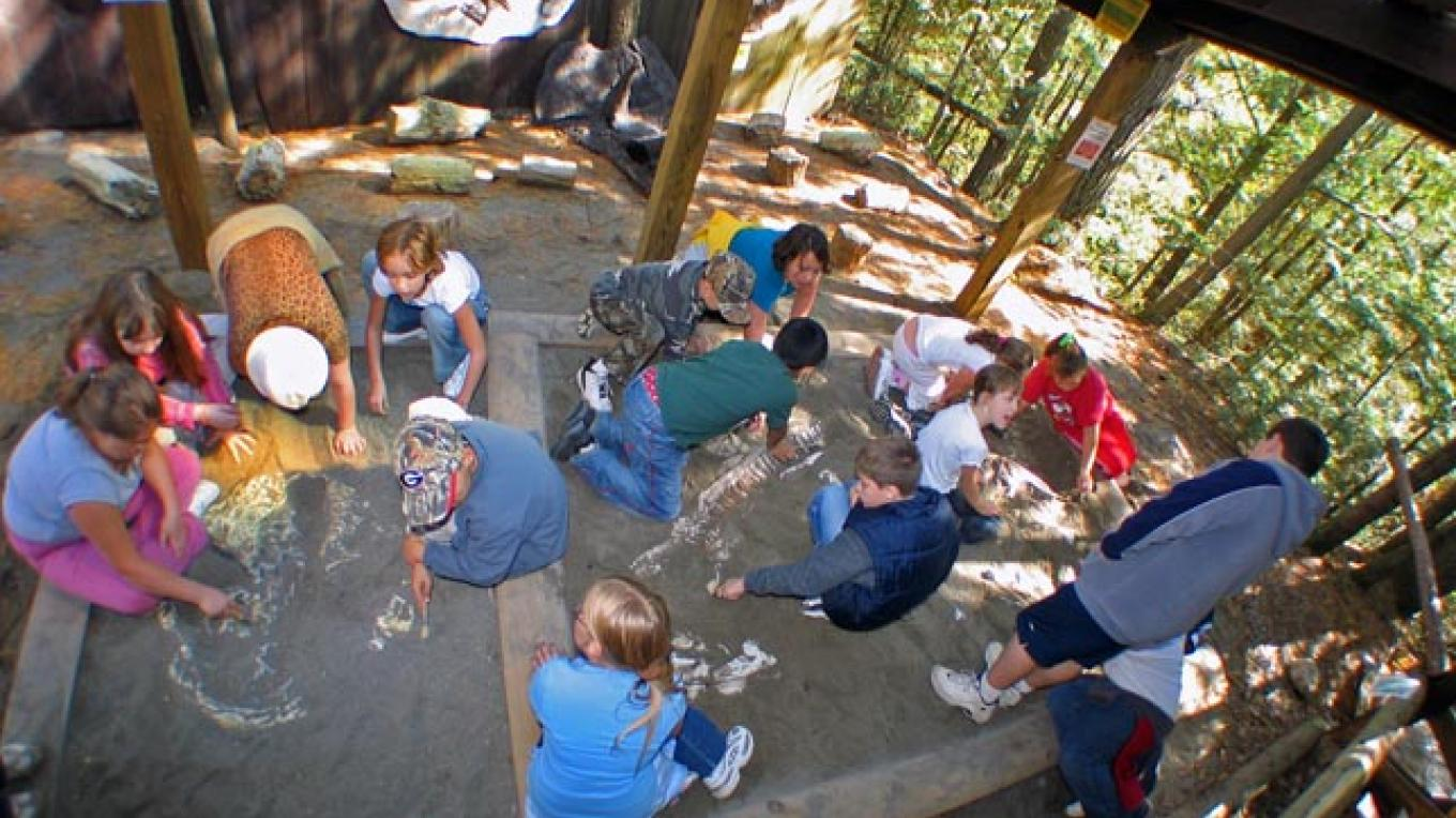 Activities.  Uncovering Dino Bones in our free Dino Dig area. – Greg Beckler