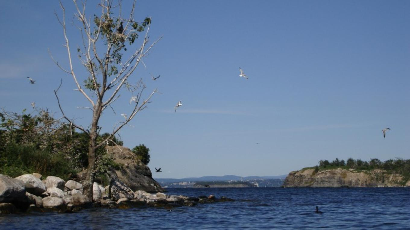 Looking east toward Vermont through the channel between two of the Four Brothers Islands. – Courtesy of Cathy Frank