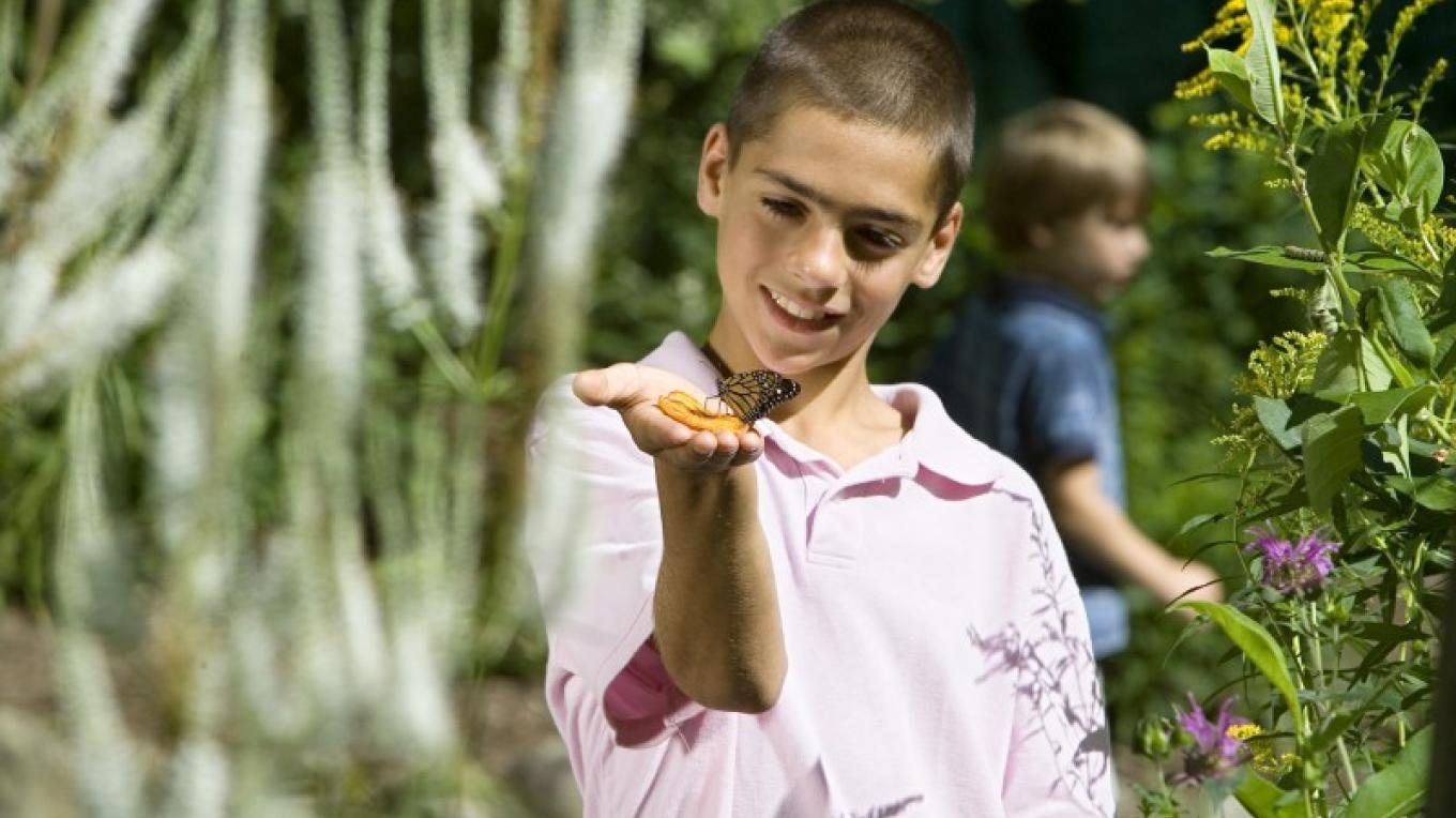 Boy with Karner Butterfly – Warren County Tourism
